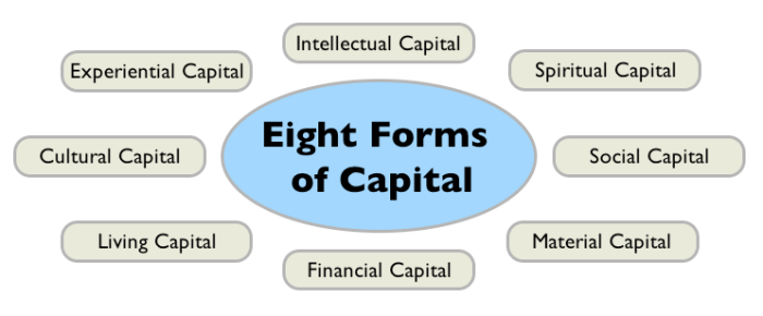 Fig_1_Eight_Forms_of_Captial